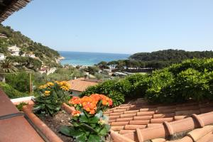 Hotel Galli, Hotels  Campo nell'Elba - big - 14
