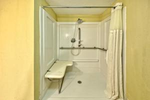 Queen Room with Roll-In Shower- Disability/Hearing Accessible - Non- Smoking