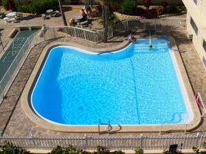 #119 At Surf Song Resort, Ferienwohnungen  St Pete Beach - big - 24