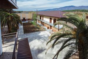 Arabica, Guest houses  Pizunda - big - 23