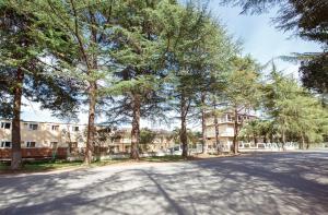 Arabica, Guest houses  Pizunda - big - 42