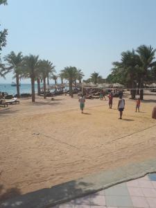 Oazis resort Hurghada, Apartmanok  Gurdaka - big - 13