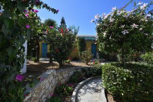 Surfing Beach Village Paros, Hotel  Santa Maria - big - 5