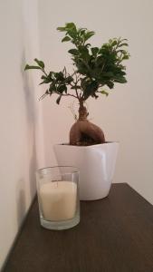Appartamento Righi24 - AbcAlberghi.com