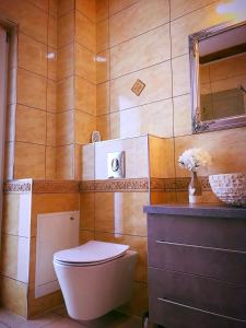 Holiday Inn Apartment, Apartments  Sibiu - big - 11