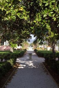 Villa Zuccari (7 of 64)