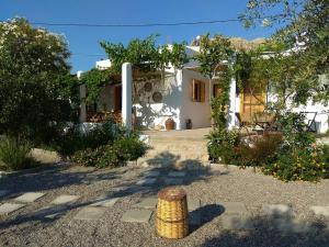 Ktima Natura, Holiday homes  Archangelos - big - 1