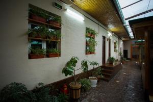 Eco Hotel, Hotel  Tashkent - big - 41