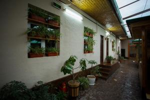 Eco Hotel, Hotely  Tashkent - big - 41