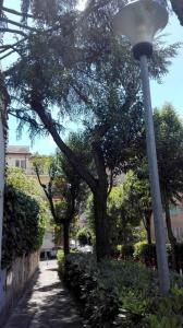 Vatican Aurelia 325, Holiday homes  Rome - big - 20