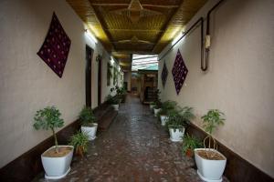 Eco Hotel, Hotely  Tashkent - big - 35