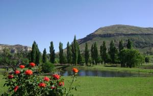 Lake Clarens Guest House, Guest houses  Clarens - big - 51