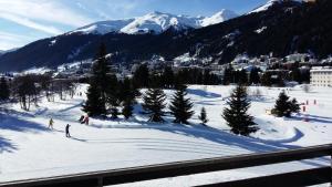 Golf park Residence, Appartamenti  Davos - big - 1