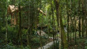 Refúgio Mantiqueira, Chaty v prírode  São Bento do Sapucaí - big - 140