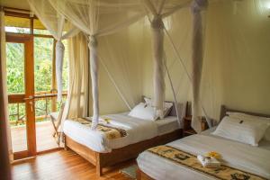 Ichumbi Gorilla Lodge, Лоджи  Kisoro - big - 4