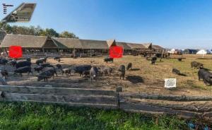 Farm stay Orlov put, Farmházak  Bellye - big - 47