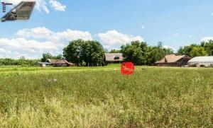 Farm stay Orlov put, Farmházak  Bellye - big - 45