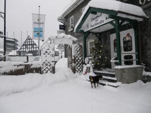 Gasthof zur Hochheide, Penziony  Winterberg - big - 31