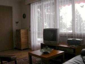 Apartment Mon Abri, Апартаменты  Беатенберг - big - 15