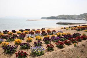 Shodoshima Seaside Hotel Matsukaze, Ryokany  Tonosho - big - 49