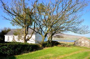 Cottage 101 - Moyard, Case vacanze  Letterfrack - big - 38