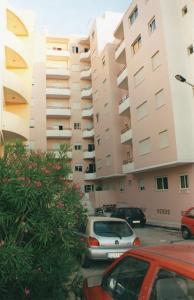 Apartment Av Sa Carneiro/travessa da abelheira