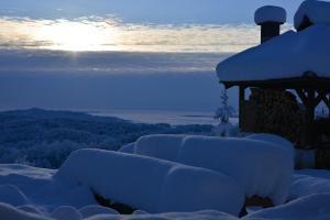 Guest House Lagotto's Peak