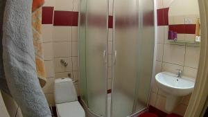 Hotel Pod Trzema Różami, Hotely  Sanok - big - 10