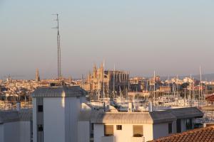 Apartamentos Gomila Park, Apartments  Palma de Mallorca - big - 39
