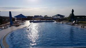 Oasis Beach Club, Szállodák  Lazurne - big - 17