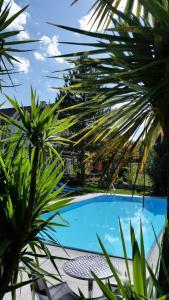 Hotel Villa Flora, Hotely  Velden am Wörthersee - big - 15