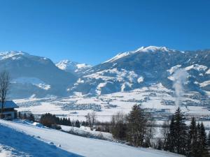 Haus Ruech 164W, Case vacanze  Hart im Zillertal - big - 28