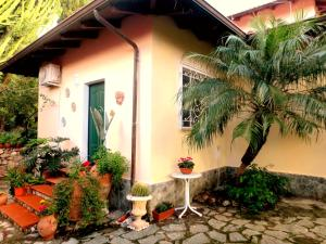 Casa con giardino sita in Falerna Marina