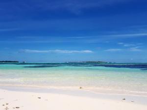 Luxury Beach Maldives, Vendégházak  Guraidhoo - big - 10