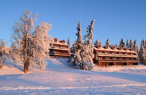 Nordseter Apartments - Hafjell / Lillehammer
