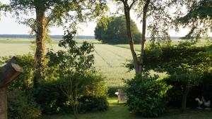 B&B Droom 44, Bed and breakfasts  Buinerveen - big - 26