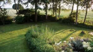 B&B Droom 44, Bed and breakfasts  Buinerveen - big - 23