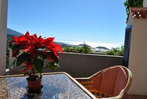 Casitas Rosheli, Appartamenti  Los Llanos de Aridane - big - 8