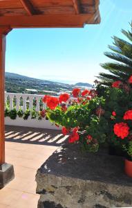 Casitas Rosheli, Appartamenti  Los Llanos de Aridane - big - 24