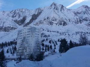 Casina on the snows at Tonale - Apartment - Passo Tonale