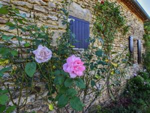 Maison De Vacances - Loubejac 12, Dovolenkové domy  Saint-Cernin-de-l'Herm - big - 23