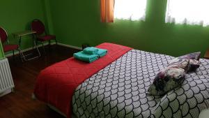 Hostal Viajeros, Гостевые дома  Пунта-Аренас - big - 8
