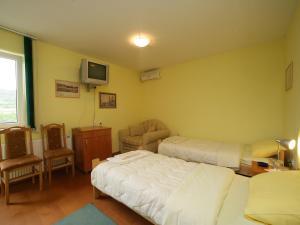 Villa Belilo 69, Penziony  Sremski Karlovci - big - 3