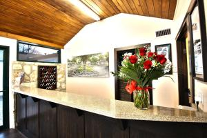 Peach Tree Inn & Suites, Hotely  Fredericksburg - big - 49