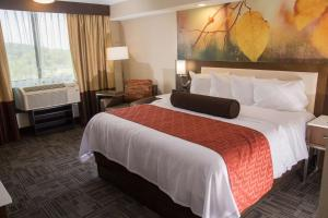 Best Western Premier Milwaukee-Brookfield Hotel & Suites, Отели  Brookfield - big - 49