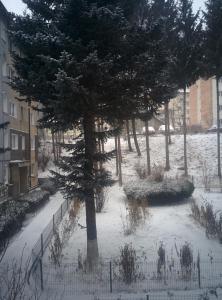 Apartment Dada, Apartmanok  Sinaia - big - 13