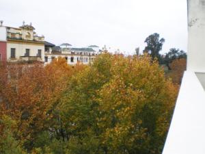 Apartamentos Murallas de Sevilla, Ferienwohnungen  Sevilla - big - 81