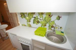 Apartment Mina, Appartamenti  Belgrado - big - 4