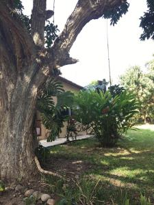 Hotel Carrizal Spa, Chaty  Jalcomulco - big - 48