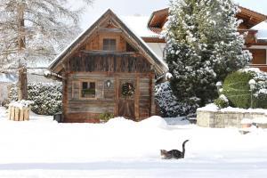 Haus Alexander, Guest houses  Schladming - big - 99